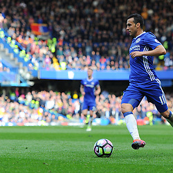 Pedro of Chelsea on the ball during Chelsea vs Crystal Palace, Premier League , 01.04.17 (c) Harriet Lander | SportPix.org.uk