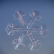 Snowflake magnified under microscope | Snowflakes | Snow Crystal | Photographs | Schneeflocke | Schneekristall | Fotografie