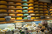 Shelves of cheese wheels at traditional cheese shop Gouds Kaashuis in Hoogstraat in Gouda, Holland, The Netherlands