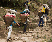 Porters with T-shaped walking sticks carry bamboo baskets loaded with vegetables and supplies up a steep trail, in Nepal. Sagarmatha National Park (created 1976) was honored as a UNESCO World Heritage Site in 1979.