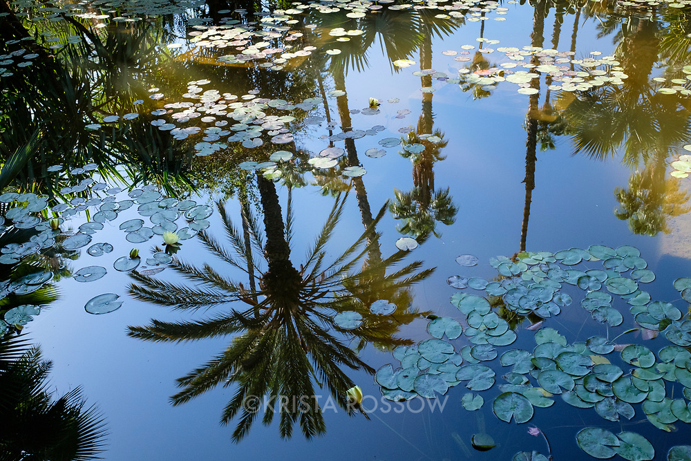 France has Monet's Giverny and Morocco has Majorelle's beautiful gardens. It is easy to see how the beautiful grounds here inspired the French painter during his time in Marrakech.