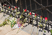 Nine roses decorate a iron gate at the historic Mother Emanuel African Methodist Episcopal Church on the eve of the anniversary of the mass shooting June 16, 2016 in Charleston, South Carolina. Nine members were gunned down during bible study at the church on June 17, 2015.