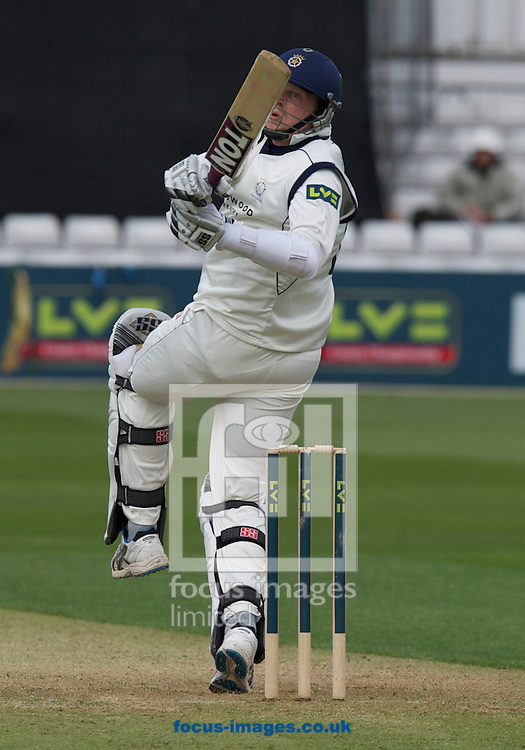 Picture by Alan Stanford/Focus Images Ltd +44 7915 056117.29/04/2013.Alastair Cook of Essex County Cricket Club takes the catch from this hit by David Balcombe of Hampshire County Cricket Club during the LV County Championship Div Two match at the County Ground, Chelmsford, Chelmsford..