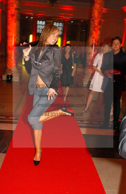 TARA PALMER-TOMKINSON at the 5th anniversary party for InStyle magazine held at The V&amp;A, Cromwell Road, London SW7 on 19th June 2006.<br /><br />NON EXCLUSIVE - WORLD RIGHTS