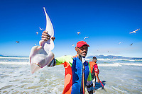 Sand shark caught in a trek net haul and later released, Strandfontein, False Bay, Western Cape, South Africa