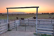 Ranch at sunrise in Emmett Idaho.