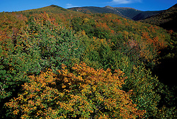 Lafayette Brook Scenic Area.  Mt. Lafayette. Fall foliage.  Near Franconia Notch.  White Mountain N.F., NH