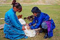 Mongolie, province de Bayankhongor, campement nomade, decoupe du fromage frais pour le faire secher // Mongolia, Bayankhongor province, nomad camp, women cut fresh cheese for dry