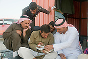 Middle East, Hashemite Kingdom of Jordan, Aqaba Governorate, the highland mountains a group of local Bedouins reading a book