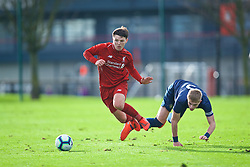 KIRKBY, ENGLAND - Saturday, January 26, 2019: Liverpool's Bobby Duncan (L) and Manchester United's captain Brandon Williams during the FA Premier League match between Liverpool FC and Manchester United FC at The Academy. (Pic by David Rawcliffe/Propaganda)