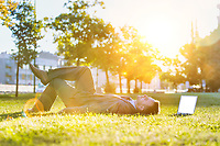 Mature businessman lying on the grass with his laptop