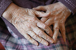 Close up of hands of an elderly woman; relaxed and resting on her lap,