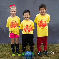 2017 Fall Youth Green Forest Soccer