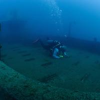 """""""Nizzan"""" shipwreck"""
