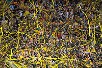Fussball, 2. Bundesliga, Saison 2011/12, SG Dynamo Dresden - FC St.Pauli, Sonntag (29.04.12), gluecksgas Stadion, Dresden. Dresdens Fans.