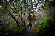 Robert Bengston hikes the Oakwood Valley trail in the Tennessee Valley area in Marin County, Calif., December 13, 2012.
