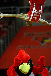04 February 2012:  An acrobat from the Jessie White Tumblers does a flip off a vault and flies over Reggie Redbird at halftime during an NCAA Missouri Valley Conference mens basketball game where the Bradley Braves lost to the Illinois State Redbirds 78 - 48 in Redbird Arena, Normal IL