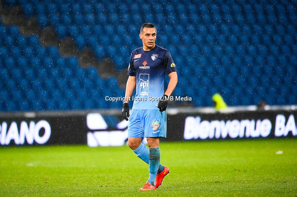 Jean Pascal FONTAINE  - 12.12.2014 - Le Havre / Laval - 17eme journee de Ligue 2 <br /> Photo : Fred Porcu / Icon Sport