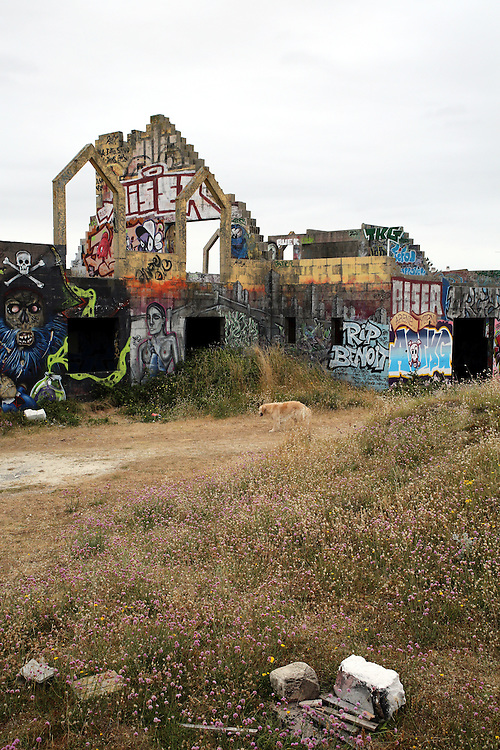 Ruins of graffiti-covered houses at Pirou-Plage, Normandy