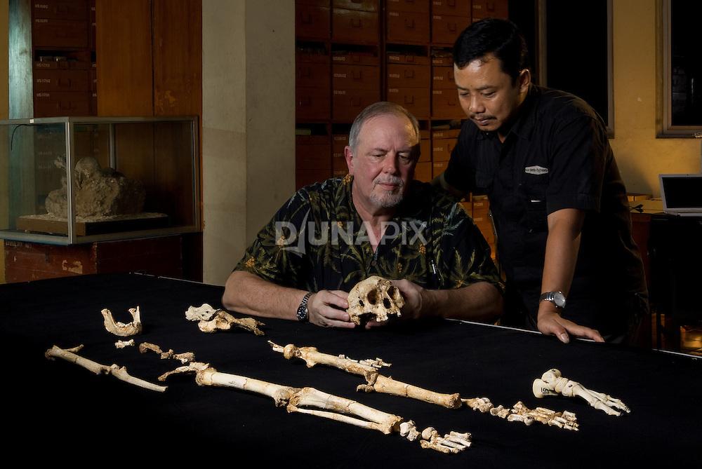"Dr. William Jungers and Thomas Sutikna admire ""LB1"", the type specimen skeleton of Homo floresiensis, a.k.a., the Flores hobbit."