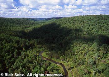 View from Kinzua Bridge, Kinzua Bridge State Park, McKean Co., PA. Aerial Photograph Pennsylvania