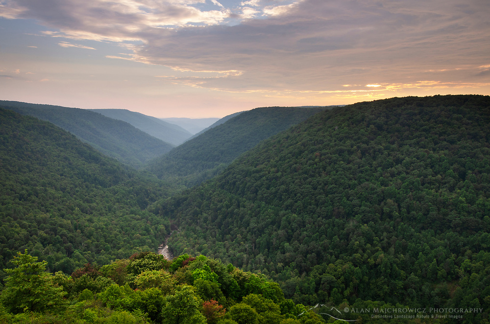 Blackwarter River Valley seen from Lindy Point Overlook. Blackwater falls State Park West Virgina