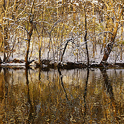 &quot;Golden Way&quot;<br /> Lovely golden hour reflections on the Huron River in winter time!