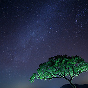NIGHT SKY DURING NEW MOON IN SAHYADRI MOUNTAINS, MAHARASTHRA, INDIA.