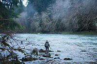 Fly fishing for steelhead on the Queets River. Olympic National Park, WA.