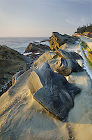 Concretions in the sandstone cliffs of Shore Acres State Park on the Oregon Coast.