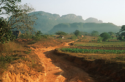 Dirt path through the countryside near to Vinales; Pinar Province; Cuba,