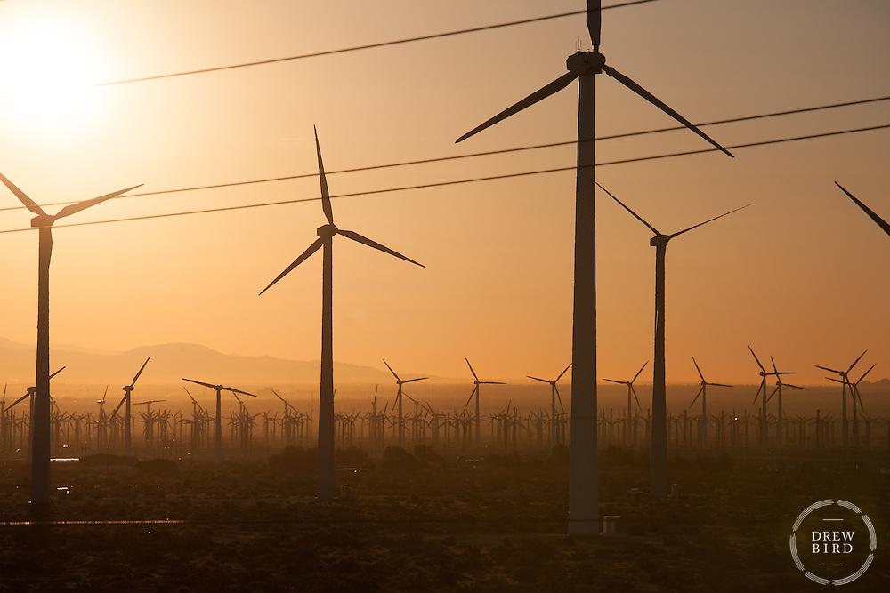 Wind Turbines   Clean Energy   Renewable Energy   Climate Change Stories   Sunset   Drew Bird Photography   San Francisco Freelance Photographer   Freelance Photojournalist   Oakland Event Photographer