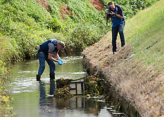 Napier - Body found in creek