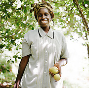 LIMURU, KENYA – MARCH 13, 2010: A Kenyan woman harvests pears in an orchard behind her home in rural Limuru, Kenya.