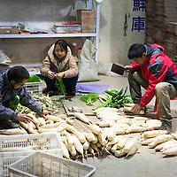 GAOBEIDIAN, 7.NOV. 2014 : Mitglieder der Farm des Rechten Weges verpacken Gemuese zum Verkauf an Club Mitglieder.