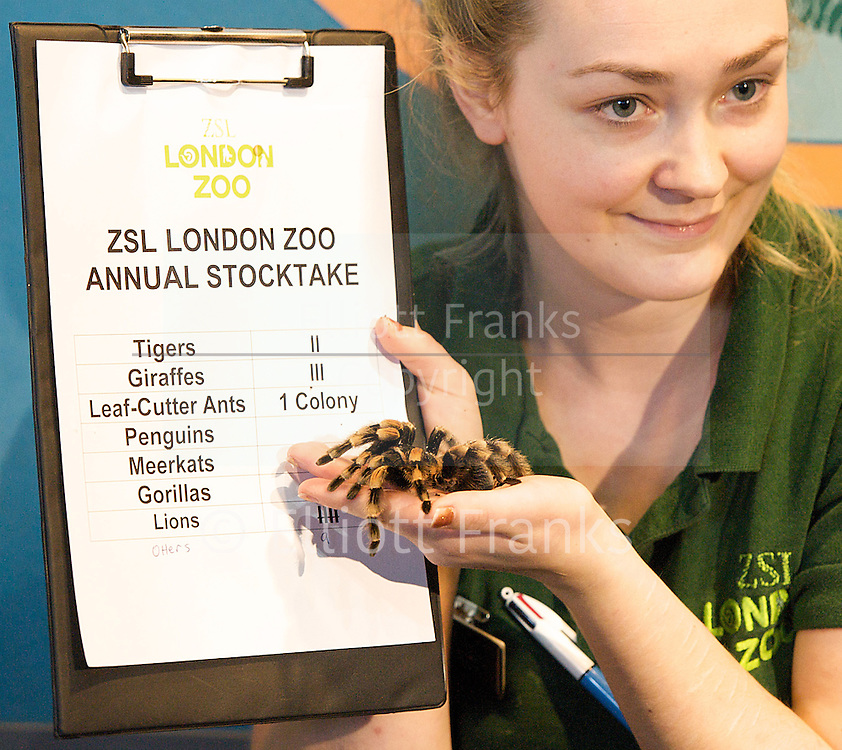 London Zoo <br />
