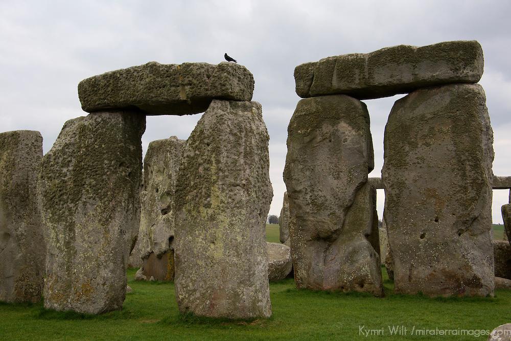 Europe, Great Britain, England, Wiltshire. Stonehenge, a UNESCO World Heritage Site.
