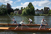 "Maidenhead, United Kingdom.  ""Mixed Doubles"", in the first few meters of the start. ""Thames Punting Club Regatta"", Bray Reach.<br />