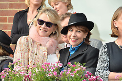 NEWBURY, ENGLAND 26TH NOVEMBER 2016: Left to right, Louise Fennell and Kathy Lette at Hennessy Gold Cup meeting Newbury racecourse Newbury England. 26th November 2016. Photo by Dominic O'Neill