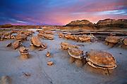 """Sunset on the """"Egg Garden"""". Bisti/De-Na-Zin Wilderness in northwest New Mexico."""