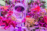 Spaceman and hydroponic plants on the Rocket Science stand - RHS Chelsea Flower Show, Chelsea Hospital, London UK, 18 May 2015.