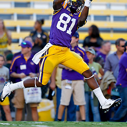 October 16, 2010; Baton Rouge, LA, USA; LSU Tigers wide receiver Armand Williams (81) during warm ups prior to kickoff against the McNeese State Cowboys at Tiger Stadium. LSU defeated McNeese State 32-10. Mandatory Credit: Derick E. Hingle