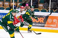 2019-12-02 | Umeå, Sweden:Mora (29) Johan Persson and Björklöven (29) Alexander Wiklund chaising the puckholder Björklöven (15) Tyler Vesel in  HockeyAllsvenskan during the game  between Björklöven and Mora at A3 Arena ( Photo by: Michael Lundström | Swe Press Photo )<br /> <br /> Keywords: Umeå, Hockey, HockeyAllsvenskan, A3 Arena, Björklöven, Mora, mlbm191202