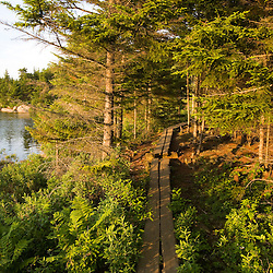 "A wooden walkway next to ""The Bowl"" in Maine's Acadia National Park.  The Bowl Trail near the Beehive."