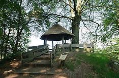 Oude Buisse Heide, Natuurmonumenten, Achtmaal, Noord Brabant, Netherlands