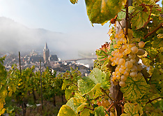 Images from Wine country in the Mosel Valley Germany