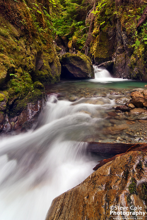 Secrets of Bagley Creek - North Fork Nooksack River Valley