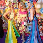 NLD/Amsterdam20151111 - Premiere Priscilla, Queen of the Desert, Mayday