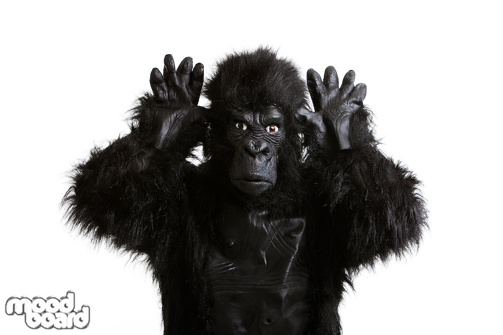 Young man in a gorilla costume making funny face against white background