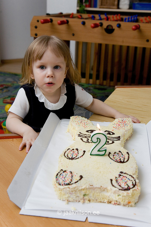 Two Year Old Girl With Birthday Cake Jaak Nilson Photostock